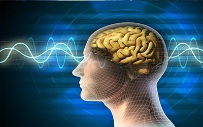 beyin ve oruc